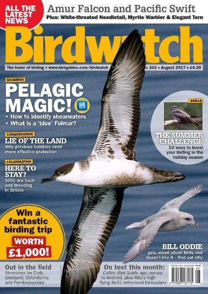 Birdwatch UK — Issue 302 — August 2017