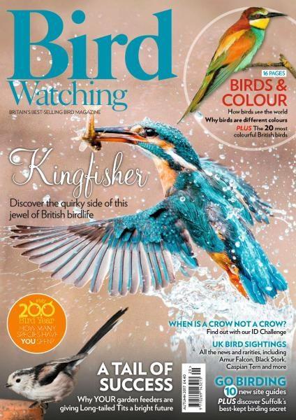 Bird Watching UK — Autumn 2017