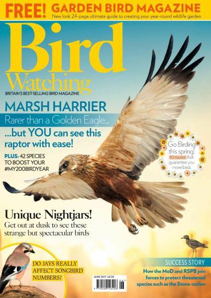 Bird Watching UK – June 2017