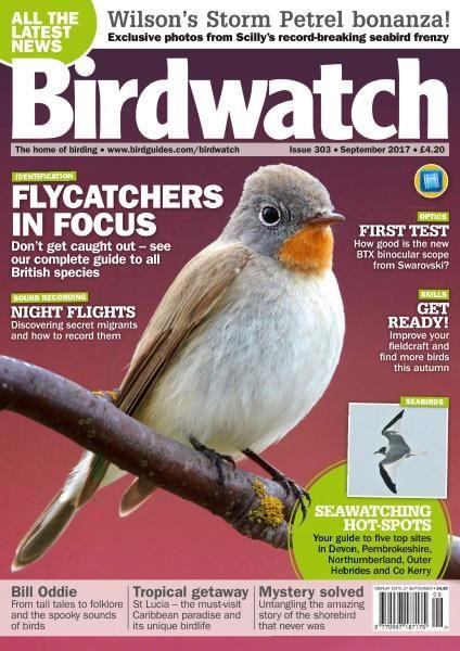 Birdwatch UK — September 2017