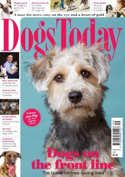 Dogs Today UK — September 2017