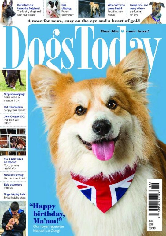 Dogs Today UK – June 2018