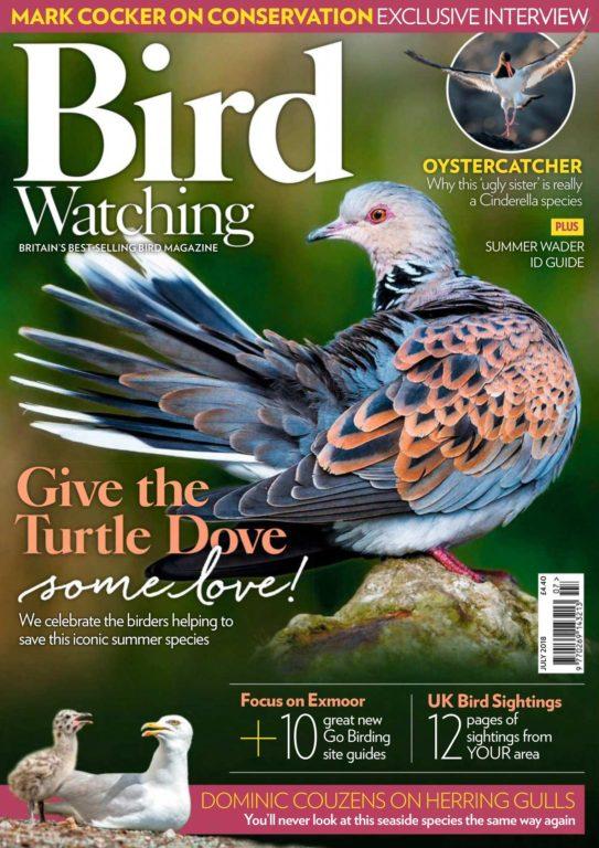 Bird Watching UK – July 2018