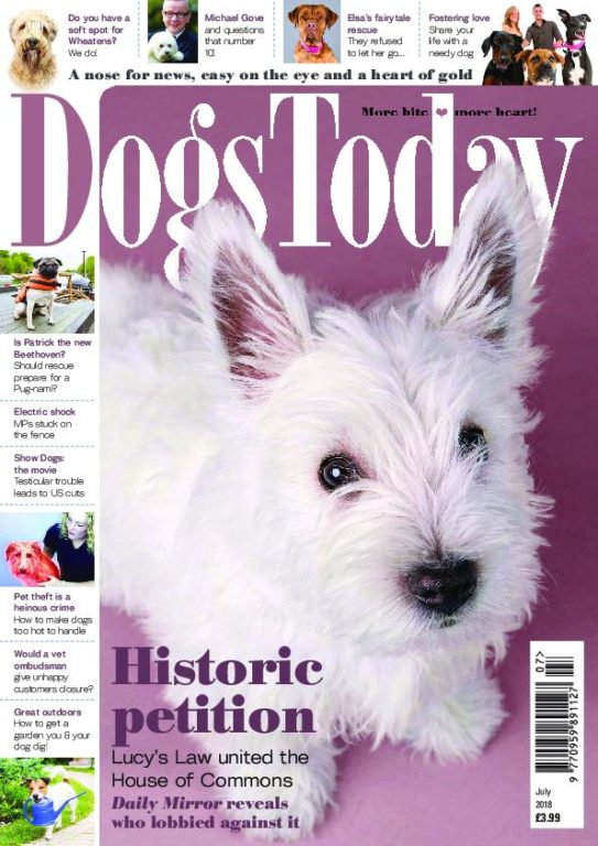Dogs Today UK – July 2018