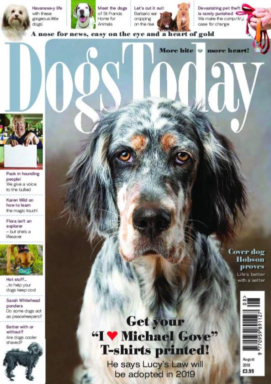 Dogs Today UK – August 2018