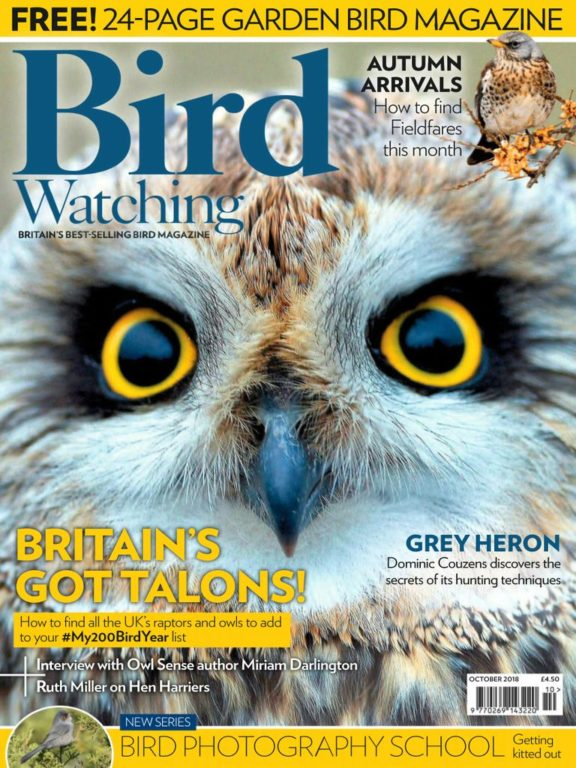 Bird Watching UK – October 2018