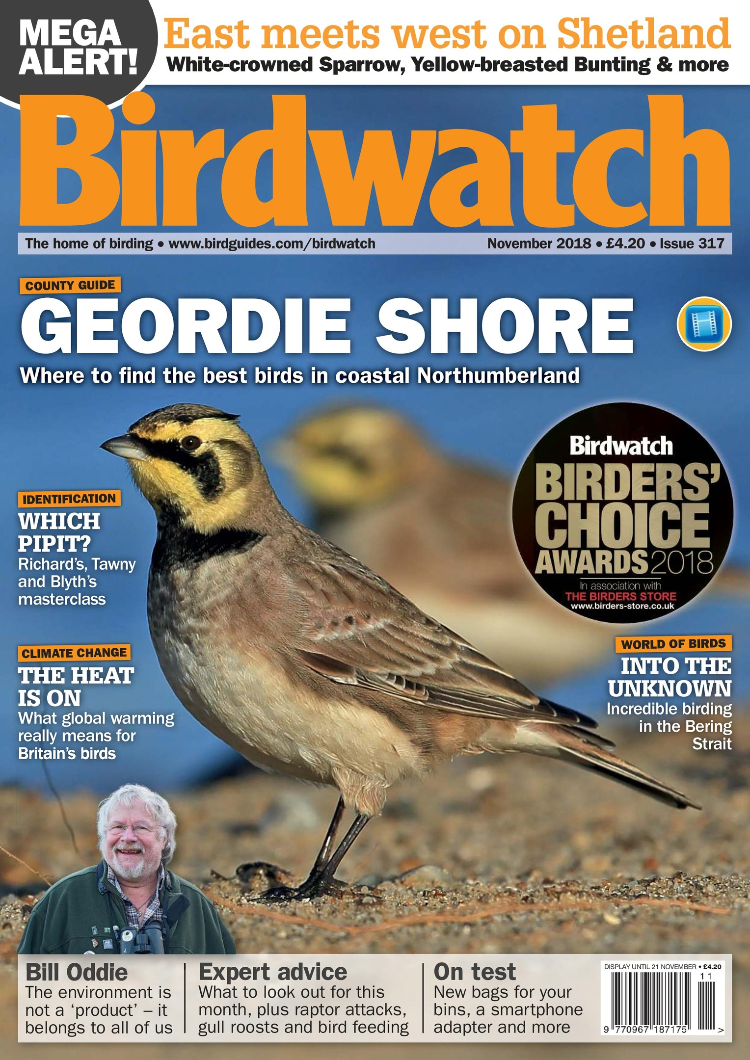 Birdwatch UK – November 2018