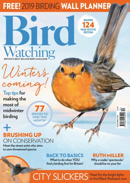 Bird Watching UK – December 2018