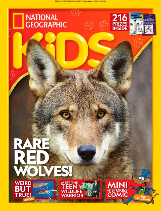 National Geographic Kids UK – 12.2018