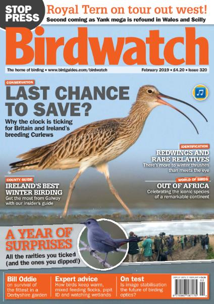 Birdwatch UK – February 2019
