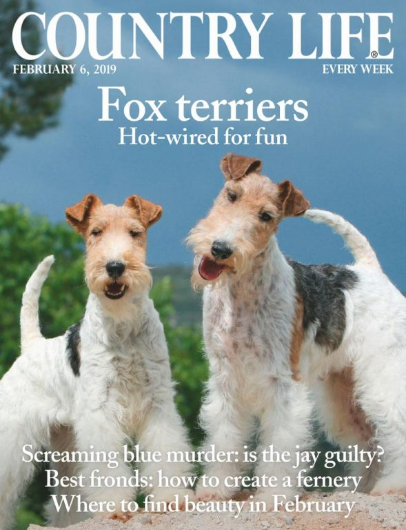 Country Life UK – February 06, 2019