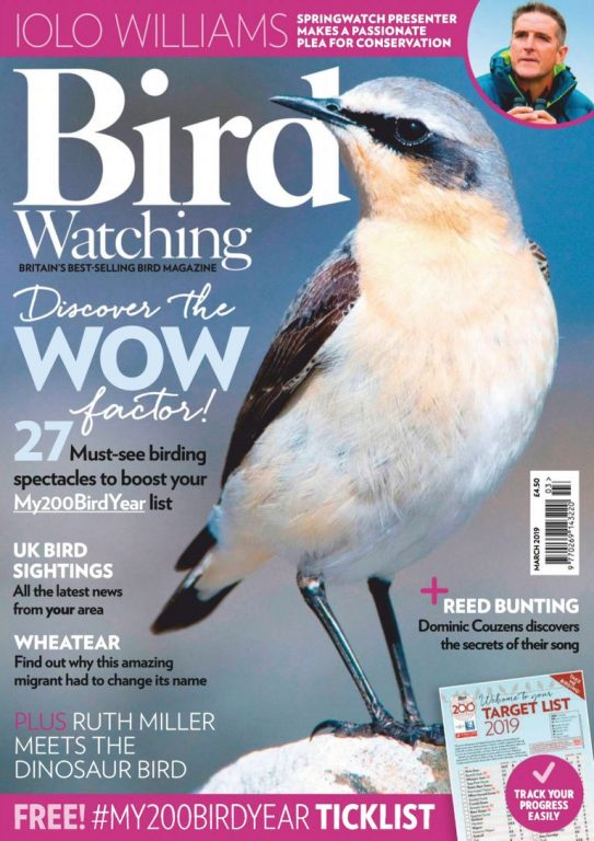 Bird Watching UK – March 2019