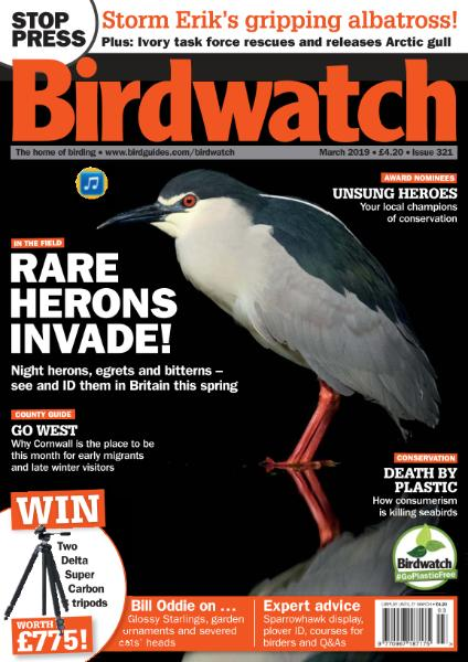 Birdwatch UK – March 2019