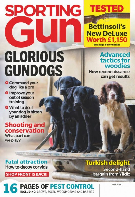 Sporting Gun UK – June 2019