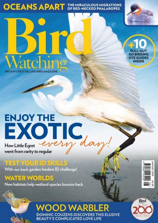 Bird Watching UK – August 2019