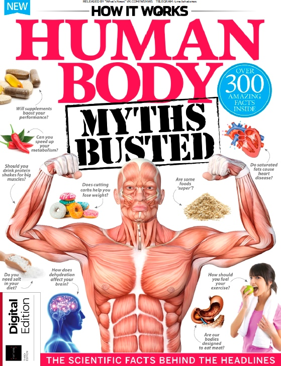 How It Works – Human Body Myths Busted – 2019