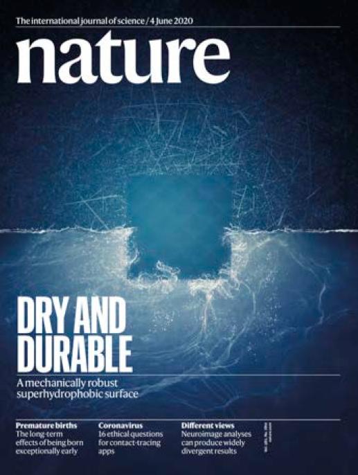 Nature – 04.06.2020