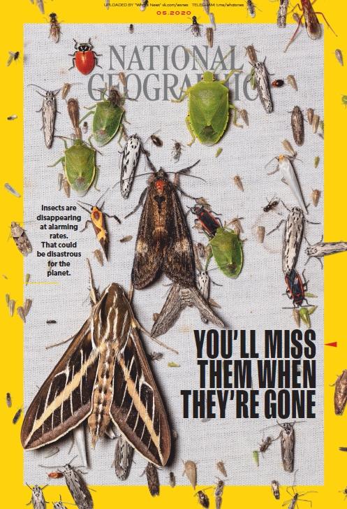National Geographic UK — 05.2020