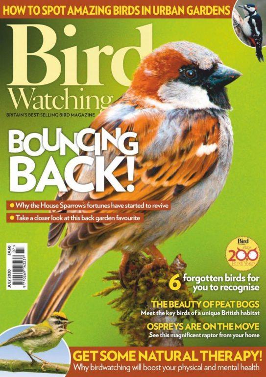 Bird Watching UK – July 2020
