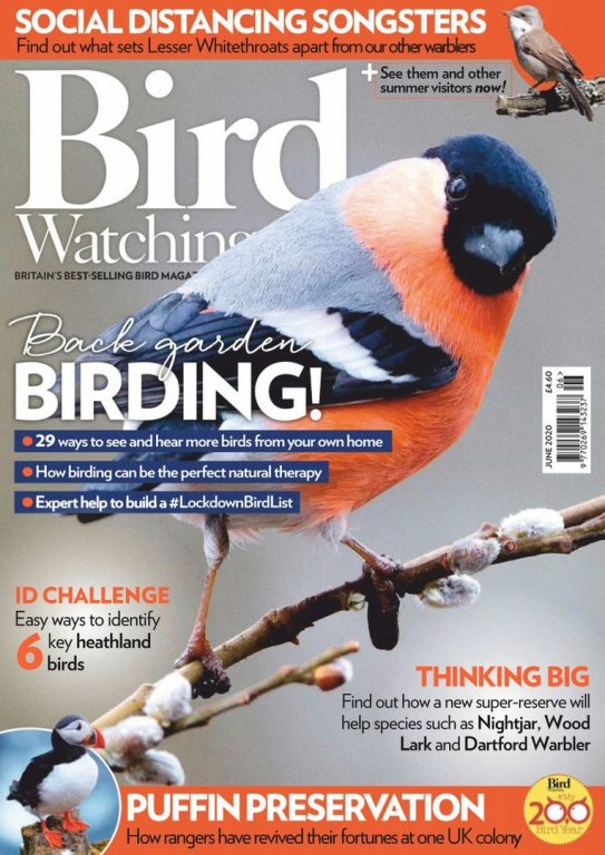 Bird Watching UK – June 2020