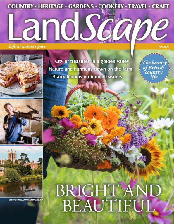 Landscape UK – July 2020