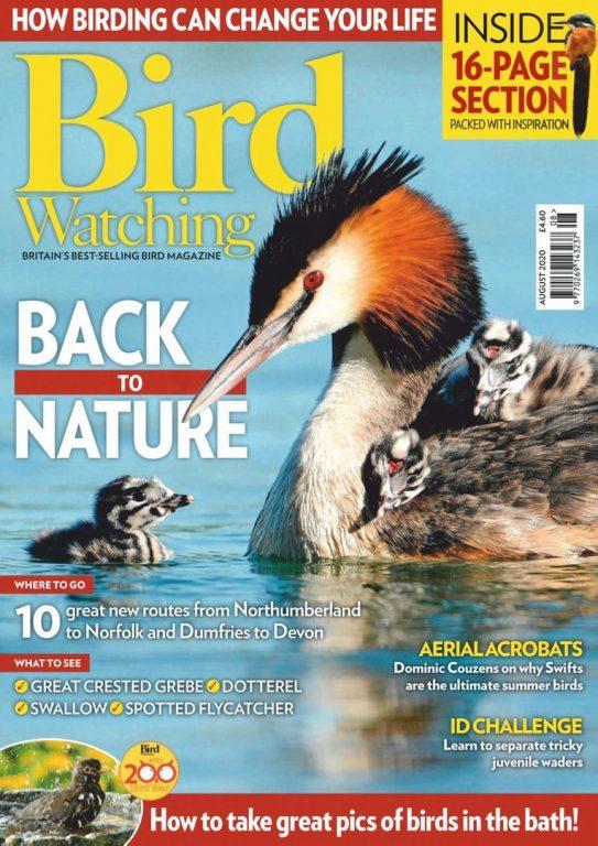 Bird Watching UK – August 2020